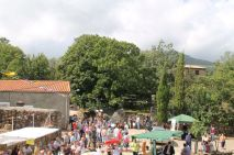 Feria Casarito Viejo (7)